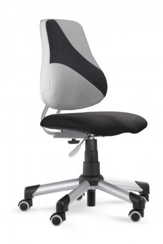 Dětské židle a židličky Mayer Dětská židle Actikid 2428 A2 Q2 404