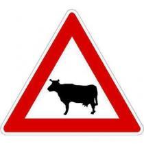 Dopravní značka Zvířata (A13)