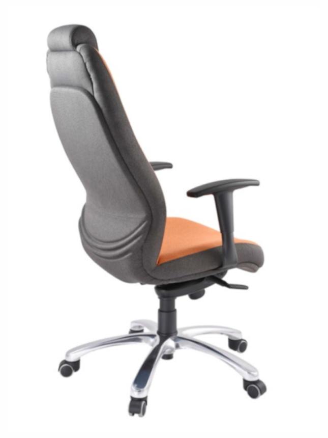 Kancelářské křeslo Prowork - Kancelářské křeslo Stripo 5352