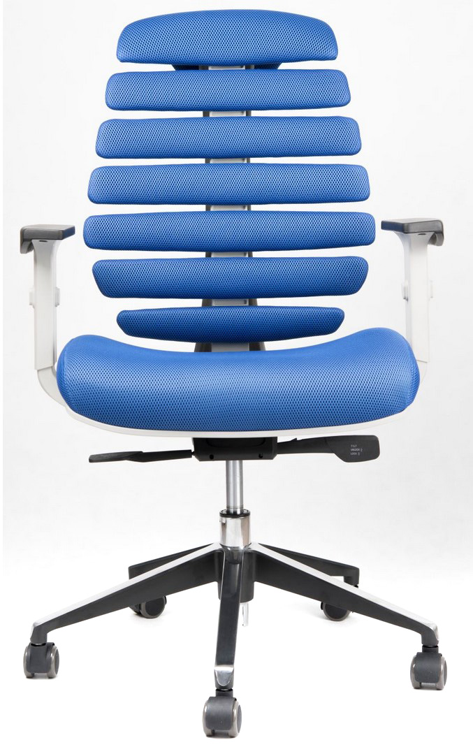 Kancelářské židle Node - Kancelářská židle FISH BONES šedý plast, modrá látka MESH TW10