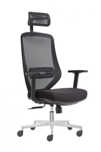 Ergonomické židle - zdravotní Peška Astra CR + P