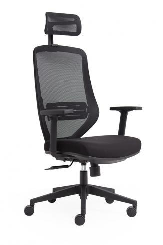 Ergonomické židle - zdravotní Peška Astra N + P