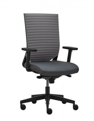 Kancelářské židle RIM Kancelářská židle Easy PRO EP 1207 L